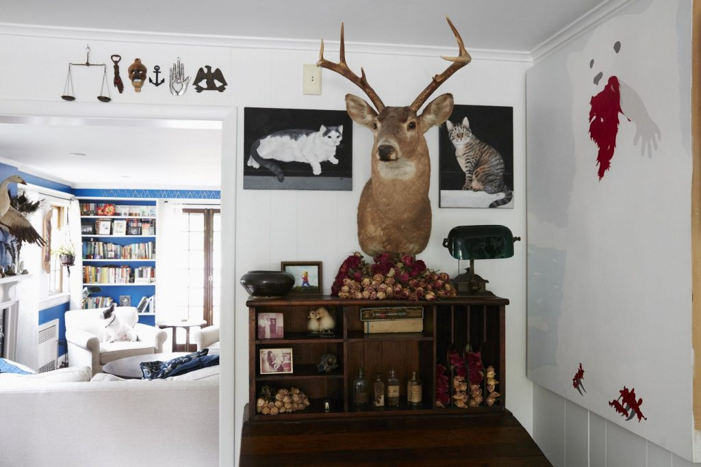 Zoe Bean & Sweety Tattoo: Natural curiosities, oddities and art create a unique menagerie and an interior design wonder